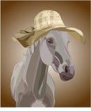 Koń w kapeluszu Obraz Royalty Free