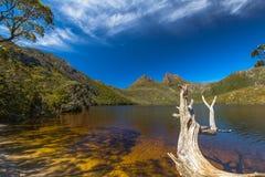 Kołysankowy Halny park narodowy Tasmania Zdjęcie Royalty Free
