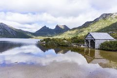 kołysankowy halny Tasmania Zdjęcia Royalty Free