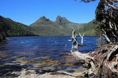 Kołysankowy jeziora St Clair park narodowy Zdjęcia Royalty Free