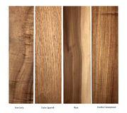 Koa-Curly,Cedar,Plum and Arariba wood samples Stock Image