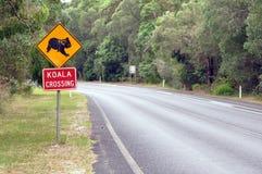 Koala-Überfahrt Lizenzfreies Stockbild