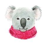 Koala σε ένα ρόδινο μαντίλι διανυσματική απεικόνιση