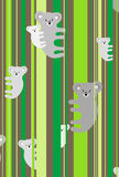 koala семьи Стоковое фото RF