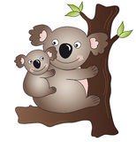 Koala. Illustration of mother koala with her puppy