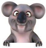 Koala ελεύθερη απεικόνιση δικαιώματος