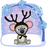 Koala with antlers Royalty Free Stock Photography