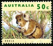 Koala Australian Postage Stamp Royalty Free Stock Photos