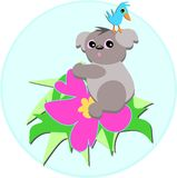Koala Bear and Bird on a Hibiscus Flower Stock Photography