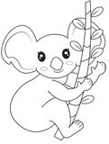 Koala bear coloring page Stock Image
