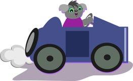 Koala Bear is Having a Fun Drive Royalty Free Stock Images