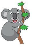 Koala cartoon Stock Image