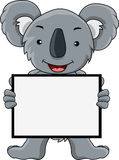 Koala cartoon with blank sign Royalty Free Stock Image