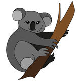 Koala che si siede su un albero Immagine Stock Libera da Diritti