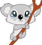 Koala de chéri Photographie stock libre de droits
