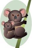 Koala de la madre y del bebé Foto de archivo libre de regalías