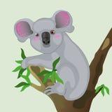 Koala em uma árvore. ilustração royalty free
