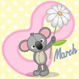 Koala with flower Stock Photography