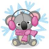 Koala in a fur headphones Royalty Free Stock Photo