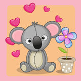 Koala with heart and flower Royalty Free Stock Photos