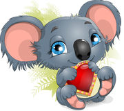 Koala and heart Royalty Free Stock Images