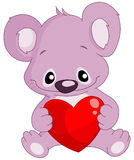Koala holding a heart Stock Photography