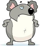 Koala irritado ilustração do vetor