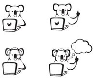 The koala with a laptop Stock Photos