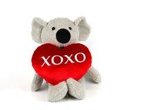 Koala linda con xoxo rojo del corazón Fotografía de archivo