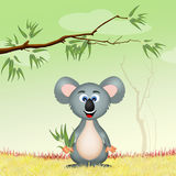 Koala met eucalipto Royalty-vrije Stock Afbeelding