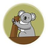 Koala op een boom. Royalty-vrije Stock Afbeelding
