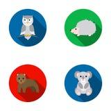 Koala,owl, bear,hedgehog.Animal set collection icons in flat style vector symbol stock illustration web. Stock Images