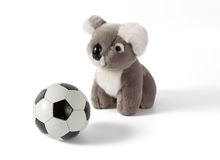 Koala Plushy com bola de futebol imagens de stock