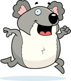 Koala Running Royalty Free Stock Images