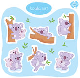 Koala Set Royalty Free Stock Images