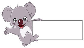 Koala with sign. Cheerful koala climbing a sign Stock Image