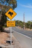 Koala sign Royalty Free Stock Image