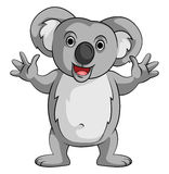 Koala Smile Stock Images