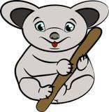 Koala su un ramo Fotografia Stock Libera da Diritti