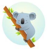 Koala sur l'arbre Image libre de droits