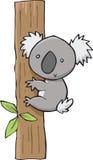 Koala sveglia Fotografia Stock