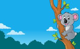 Koala theme image 3 royalty free stock image