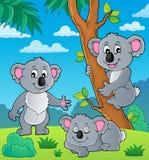 Koala theme image 1 royalty free illustration
