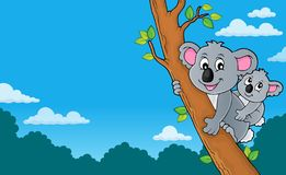Koala theme image 4 royalty free stock photos