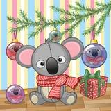 Koala under the tree Royalty Free Stock Photo