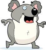 Koala Walking Royalty Free Stock Image