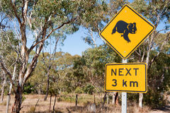 Koala Warning Stock Photo