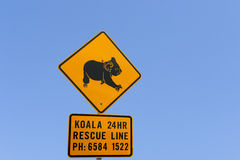 Koala warning sign. Australian koala bear traffic warning sign stock photos