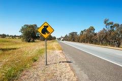Koala warning Royalty Free Stock Photo