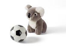 Koalaen som är plushy med fotboll, klumpa ihop sig Arkivbilder